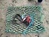 30708947_1814695662168930_8084871095397646336_o (SurfersAgainstSewage) Tags: aimee alnmouth ghost gear