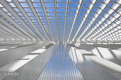 Deep White Blue View (ARTUS8) Tags: symmetrie fassade flickr highkey nikon28300mmf3556 öffentlichesgebäude linien modernearchitektur nikond800 innenarchitektur lüttich oberlicht geometrisch bogen