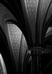 Voûtes et colonne au balcon, Basilique Notre Dame (bd168) Tags: voûtes bois églises churches wood blackandwhite blancetnoir fleursdelys xt10 xf90mmf2rlmwr