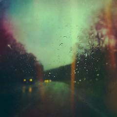 Like daggers (BLACK EYED SUZY) Tags: somber dreary lightleaks waterdrops drive rain