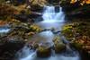 LOST IN MY DREAMS (Anderony) Tags: cascada waterfall otoño sierra cebollera cameros río autumn