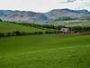 05 The Rural Life (bobbex) Tags: britain thelakes thelakedistrict northwestengland landscape nature cumbria naturalbeauty ullswater britishcountryside