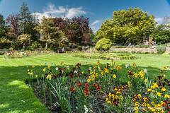 Fletcher Moss Botanical Garden-4 (Marcin Golicz travel photography) Tags: anglia botanicgarden didsbury fletcher manchester moss uk majówka may spring wiosna