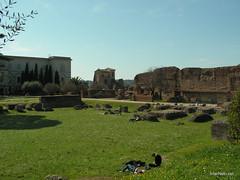 Пагорб Палатин, Рим, Італія InterNetri Italy 24