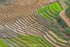 _Y2U9793.0617.QL4H.Hua Bum.Mường Tè.Lai Châu (hoanglongphoto) Tags: asia asian vietnam northvietnam northwestvietnam landscape scenery vietnamlandscape vietnamscenery vietnamscene terraces terracedfields terracedfieldsinvietnam hillside transplantingseason canon canoneos1dx tâybắc laichâu mườngtè huabum ql4h phongcảnh ruộngbậcthang phongcảnhlaichâu ruộngbậcthanglaichâu đổnước mùacấy sườnđồi canonef70200mmf28lisiiusm