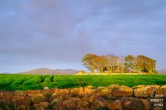 Eglwys Sant Baglan (Bryn B Jones) Tags: samsung nx3000 llanfaglan yforyd cymru wales sunset church green blue