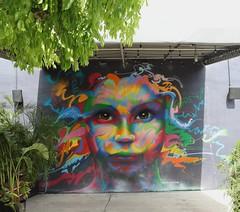 . (SA_Steve) Tags: wynwood miami miamifl florida southflorida mural streetart art