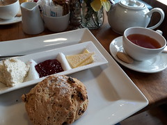 Photo of scone cream tea at Number 44 Kirky Lonssdale