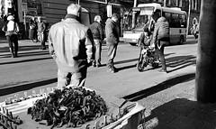 Trenini e motorini (Aellevì) Tags: street parte prova