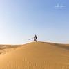 When the sand turns to gold (Thar Desert, India 2015) (Alex Stoen) Tags: 1dx alexstoen alexstoenphotography camels canon canoneos1dx ef2470mmf28lusm geotagged india samsanddunes sunset thardesert travel vacation