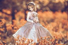 Flowers bloom (のの♪) Tags: dd dollfiedream