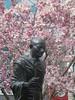 Gandhi With Magnolia I (edenpictures) Tags: unionsquarepark spring flowers blossoms floweringtrees newyorkcity manhattan nyc statue sculpture mahatmagandhi