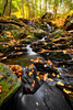 Senter Falls (Robert Clifford) Tags: fall nh newhampshire robcliffordphotography autumn foliage forest landscape leaves longexposure photowalk robertallancliffordcom robertcliffordcom senterfalls tourism water waterfall