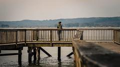 Lake Guntersville - 6525 (ExpanseProductions) Tags: photography landscape portrait selfportrait sunset sunrise lake river hill dawn fog astrophotography studio stars moon sun woods forest sky birds old abandoned cityscape waterfall