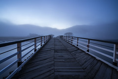 Penmaenpool Bridge (Neilpl) Tags: wales uk river snowdonia mist fog mountains nature travel holiday landscape bridge twilight sony a7rii zeiss loxia 21mm