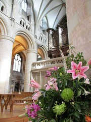 Hallowed ground (pefkosmad) Tags: flowers floral display gloucestershire gloucester gloucestercathedral cathedral interior organ nave church hallowedground holy christianity anglican churchofengland worship arches columns gothic altar screen lilies clerestory