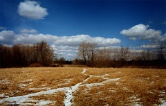 Maybury_Winter_2001 (Count_Strad) Tags: mayburystatepark maybury state park mi michigan northville autumn winter