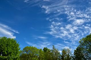 Clear & blue sky
