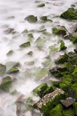tidal (eb78) Tags: ca california eastbay flemingpoint albany longexposure
