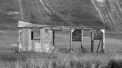 NM abandoned 1