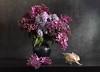 Moons Waxed And Waned (panga_ua) Tags: moonswaxedandwaned longfellow time lilacs bloom seashell flower blackvase bouquet springtime