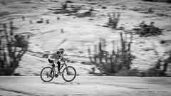 Ciclismo en el Parque (José L.Gutiérrez) Tags: nikon d7100 nature naturaleza fisheye reflex mirror landscape paisaje 10mm atacama chile desierto desert 200mm panorama