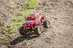 RC Monster Beetle  - 20180519-0258 (davets26) Tags: tamiyamonsterbeetle monsterbeetle remotecontrolcar tamiya offroadrc offroadremotecontrolcar rc