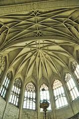 Cathédrale de Vivier (dammo07) Tags: d90 cathedrale viviers architecture voute lustre église vitro lumière hotel lumiere hdr gothique