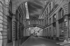 Altstadt von Prag (Photography Martin Horvath) Tags: czech prag prague blackandwhite praha architecture architektur tschechien zeiss europa czechrepublic cz