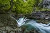 Primavera (sostingut) Tags: d750 nikon tamron haida cascada haya árbol madera roca río arroyo verde primavera agua pirineos deshielo paisaje añisclo