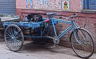 Doge Bike Varanasi DSC_8284