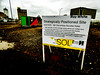 Strategically Positioned Site (Steve Taylor (Photography)) Tags: site strategicallypositionedsite sold auction architecture sign billboard building shed hut black brown contrast yellow white red green gravel newzealand nz southisland canterbury christchurch cbd city cloud sticker water puddle