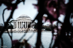 Jefferson Memorial, Washington, D.C. (georgechamoun1984) Tags: jeffersonmemorial potomac washingtondc usa america unitedstates districtofcolumbia dc washington nationalmall thomasjefferson classicalrevival