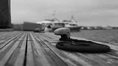 (Tiebell@) Tags: bnw monochroom ships harbor saint tropez