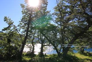 Lago Hermoso, counterlight