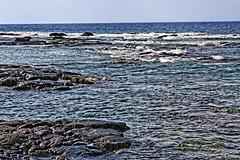 _MG_7864_DxO (carrolldeweese) Tags: puuhonuaohonaunau national historical park honaunau hawaii puuhonua