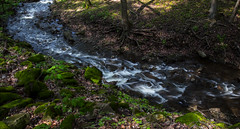 Green River (Faron Dillon) Tags: stream river canon 5ds 24105is smooth longexposure brook blurred