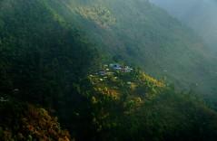 Golden Dwelling (sakthi vinodhini) Tags: morning light settlement annapurna nepal himalayas abc trek backpack mountains hills greenery ngc hdr