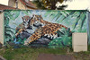 Mother (HBA_JIJO) Tags: streetart urban graffiti art france hbajijo wall mur painting fresque peinture urbain cetra arm félin ctcrew paris77 setra decoration animal