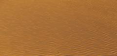 (eflon) Tags: sand ripples ripple orange sun shadow texture monochromeish