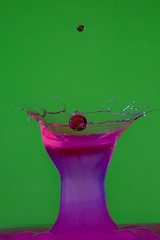 A Mary Pickford with Cherry (KellarW) Tags: watersprite waterdropletcollision waterdroplet water splash waterdrop droplets pastel absract splashart colorful bright sprites macrophotography hotpink green pink macroabstract strobist drink