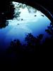 R0057762 (seba0815) Tags: ricohgrdiv bleachbypass color blue sky dark black light abstract illusion seba0815