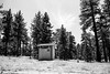 Outhouse (bhop) Tags: table mountain campground camping angeles forest camp wilderness nationalforest nature solocamping california bw blackandwhite monochrome leica m6 leicam6 rangefinder canon 50mm f14 screwmount kodak kodakfilm film trix kodaktrix v700 diy filmcamera shootfilm outhouse bathroom