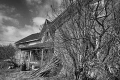 Disarray (gabi-h) Tags: monochrome blackandwhite architecture dilapidated abandoned unoccupied house gabih window barebranches princeedwardcounty oncewashome backtonature