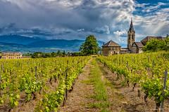 Vignoble de la combe de Savoie  (Savoie * 05/2018) (gerardcarron) Tags: 1022 batiments canon80d calme chignin church ciel cloud eglise landscape nature nuages orage paysage printemps savoie vigne village groupenuagesetciel
