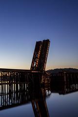 silent sentinel (eb78) Tags: ca california northbay marincounty greenbrae cortemaderacreek basculebridge northwesternpacificrailroad nwprr abandoned decay bluehour longexposure explore