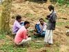 Roofers (lesterpearce) Tags: india kaziranga assam