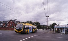 Miramar - Park Road (andrewsurgenor) Tags: transit transport publictransport nzbus gowellington electric trackless trolleybus trolleybuses wellington nz streetscenes bus buses omnibus yellow obus busse citytransport city urban newzealand