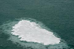 MS Westerdam - 7 Day Alaska May 2018 - Glacier Bay-284.jpg (Cindy Andrie) Tags: alaska hollandamerica d800 nature britishcolumbia beach victoriabc westerdam glacierbay landscape nikon cindyandrie canada andrie glaciers nikond800 cindy
