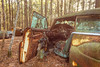 Broken Wishes (Wayne Stadler Photography) Tags: georgia preserved retro abandoned classic rustography automotive overgrown vehiclesrust rusty junkyard vintage oldcarcity rustographer derelict white